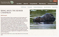 Bring Back the Beaver Campaign by OAEC